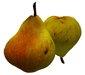 Pear fruit Comice variety Sculpty 1 prim Hyper Real V2
