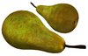 Pear fruit Conference variety Sculpty 1 prim Hyper Real V2