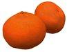 Orange fruit Clementine variety Sculpty 1 prim Hyper Real V2