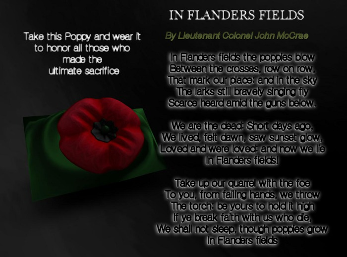 NSP Florals Rememberance Day Poppy