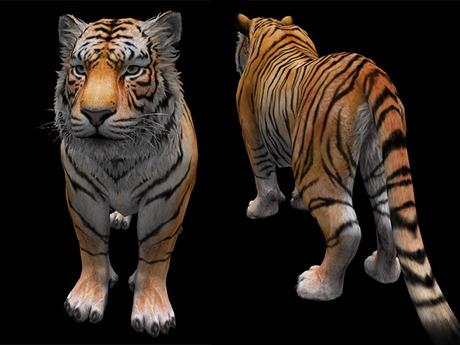 Tiger - Mesh - Full Perm