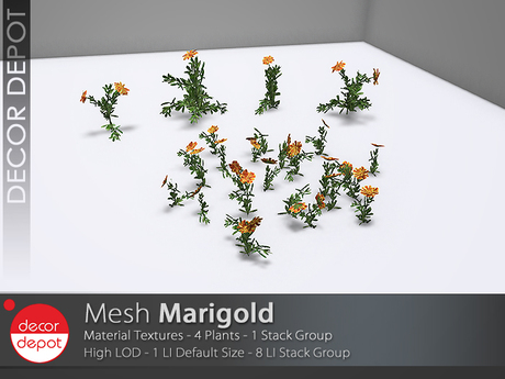 [DD] - FULL PERM  Marigold