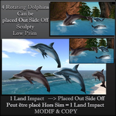 Dolphins - Dauphins