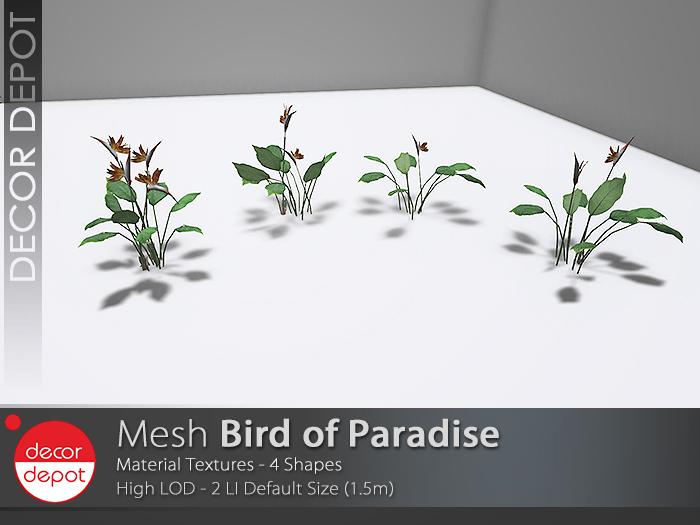 [DD] - FULL PERM  Bird of Paradise