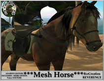 Complete avatar  Appaloosa Horse Mesh