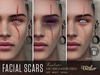 ::DEALER:: Scars Style1