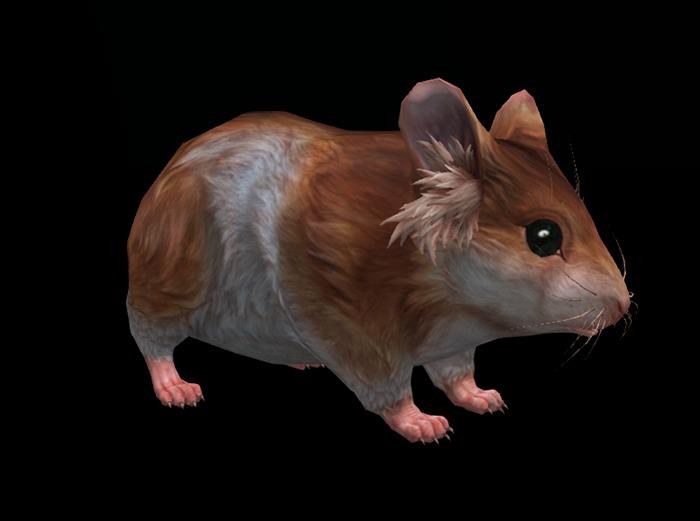 Hamster Pack - Mesh - Full Perm