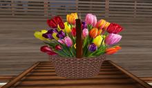 Mothers Day Basket of Tulips