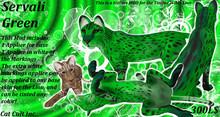 Servali Green