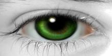 *(OO)*YUKI_Elsa Eye Green