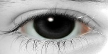 *(OO)*YUKI_Elsa Eye Black