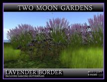 TMG - CORNFLOWER BORDER*