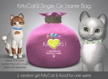 KittyCatS! Single Girl Kitten