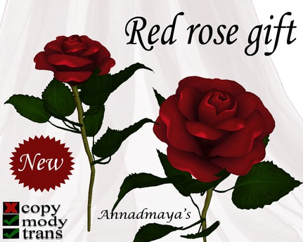 Red roses realistic gift