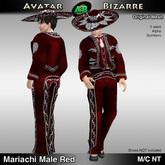 AB Mariachi Male