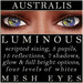 Mayfly   luminous   mesh eyes %28australis%29