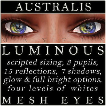 Mayfly - Luminous - Mesh Eyes (Australis)