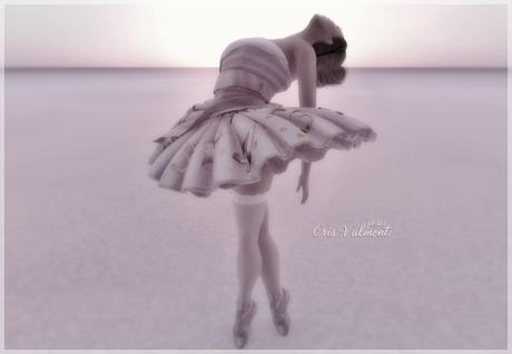CV poses - Ballet