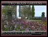 BENEATH THE ROSES* Landscaped Garden