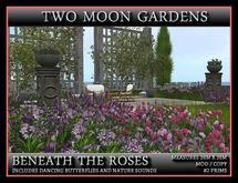 TMG - BENEATH THE ROSES*