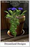 DD Blue Primrose Flower Pot Boxed