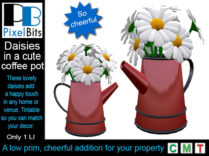 Daisies in coffee pot - tintable *Boxed*