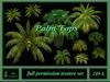 10 Palm Top Textures