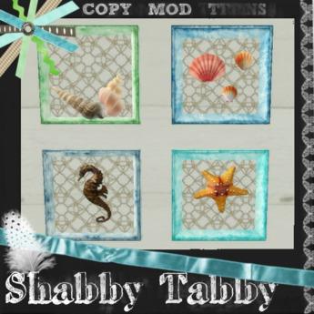 *Shabby* Shell Frames