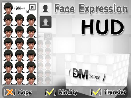 Face Expression HUD ( vdo )