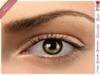 * Inkheart * - Serenity Eyes - Honey  (3 Sizes Sys+Mesh)