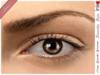 * Inkheart * - Serenity Eyes - Choco (3 Sizes Sys+Mesh)