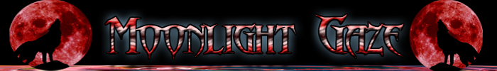 Moonlight gaze banner store