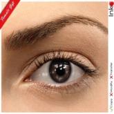 * Inkheart * - FPH Eyes - Dark Choco (3 Sizes Mesh+Sys)