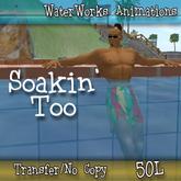 WaterWorks Animation - Soakin'  Too - Transfer