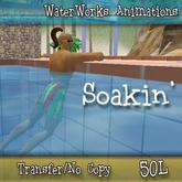 WaterWorks Animation - Soakin' - Transfer