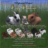 [DDD] Little Baby Bunny