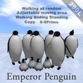 Emperor penguin_box