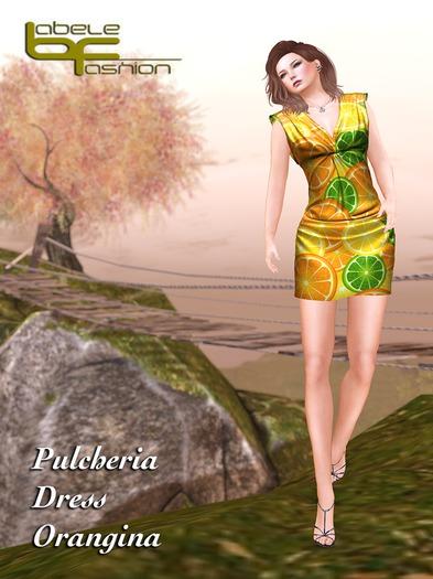 Babele Fashion :: Pulcheria Minidress Orangina