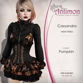 ~Antimon~ Cassandra ~ Pumpkin