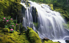 Miss Mo's Waterfall 05