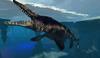 Tylosaurus 051