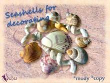 susu-***seashells mixed - copy - mody