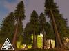Coniferous forest II. + accessories M/T