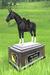 BLACK STALLION - Horse Voting Station #701 + top website ranking at www.sl-top-ranking.net