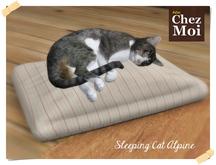 Sleeping Cat ♥ CHEZ MOI
