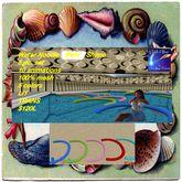 Pool Noodles bent 5 piece set colors trans(sac)
