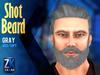 Shot Beard Gray - ZK