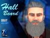 Hall Beard Gray - ZK