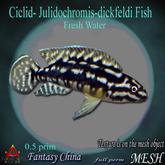 MESH catalina goby fish BP