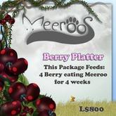 Meeroos Wild Berries Platter V3.0